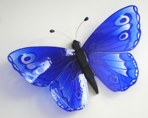 schmetterling blau k
